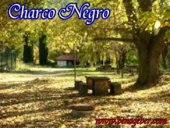 Area de Picnic Charco Negro en Otoño. Los Picachos