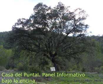 Panel Informativo en las Casas del Puntal o Casas Ximenez, Sendero de la Atalaya